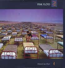 Pink Floyd - A Momentary Lapse Of Reason [Vinyl LP] used
