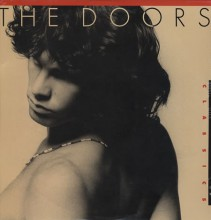 The Doors - Classics [Vinyl LP] used
