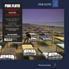 Pink Floyd - A Momentary Lapse Of Reason (180g Vinyl LP) 2017