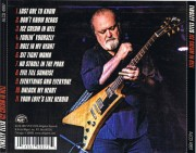 Tinsley Ellis - Ice Cream In Hell (CD) 2020
